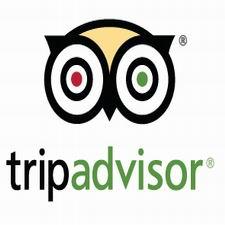 TripAdvisor logo for website blog
